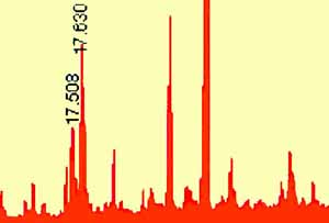 Chromatogram of Lanolin Showing an Enormous Number of Natural Chemical Species