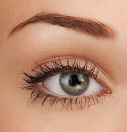 Close Up Picture of Beautiful Woman's Eye
